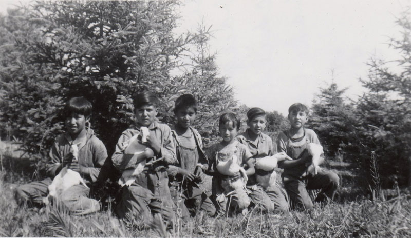 """""""Beginners"""" and grade ones with ducks, Round Lake Indian Residential School."""