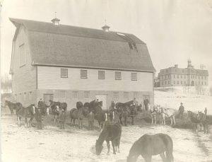Horses, Brandon Industrial Institute