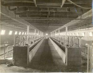 Dairy barn, Brandon Industrial Institute