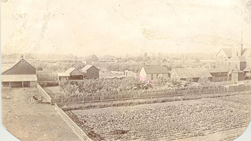 Garden and farm buildings, Coqualeetza Institute, circa 1920.