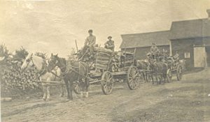 Transporting wood by horse-drawn cart, Red Deer Institute.