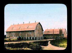 Barns, Brandon Industrial Institute, circa 1910
